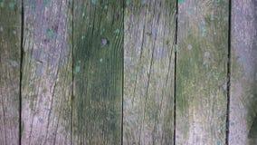 Деревянное предпосылки расположения мшистое Стоковая Фотография