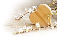 Деревянное сердце с зацветая вишней разветвляет на деревенской древесине, lov Стоковое Изображение RF