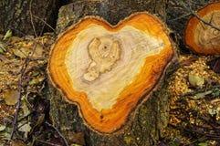 Деревянное сердце Стоковая Фотография RF