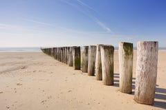 Деревянное groyne на пляже на Dishoek в Нидерландах Стоковое фото RF