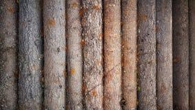 Деревянной стена планки картины журнала текстурированная предпосылкой Стоковые Изображения RF