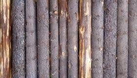 Деревянной стена планки картины журнала текстурированная предпосылкой Стоковое Изображение