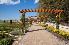 Деревянные аркы с розами Стоковое Изображение RF