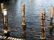 Деревянные бамперы поляка дока шлюпки Стоковые Изображения
