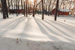Деревянные дома в лесе зимы стоковая фотография rf
