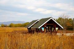 Деревянные дом и тростники, осень стоковое фото rf