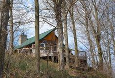 Деревянные древесины кабины весной стоковое фото rf