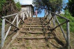 Деревянные лестница и человек Стоковое Изображение RF