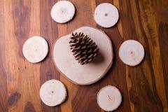 Деревянные журналы аранжировали в круге с конусом сосны в середине Стоковые Фотографии RF