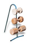 Деревянные игрушки для изолированных зубов собак Стоковые Изображения