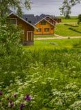 Деревянные коттеджи домов в древесинах Стоковое фото RF