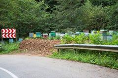 Деревянные красочные коробки покрашенные яркие цвета Деревянные пестротканые ульи для пчел стоковые изображения