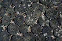 Деревянные круги предпосылки Стоковое Изображение RF
