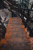 Деревянные лестницы идя вниз в сезон зимы стоковые фото