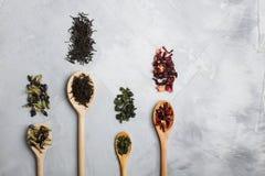 Деревянные ложки с различными листьями чая на сером конкретном backgro Стоковое Фото