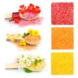 Деревянные ложки с солью для принятия ванны цвета, комплектом Стоковое Изображение