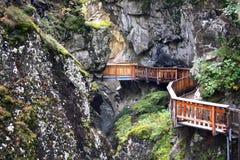 Деревянные дорожки водя через ущелье Gorner Стоковые Изображения RF