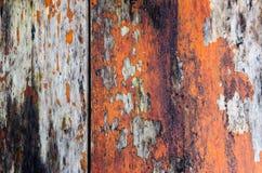 Деревянные панели стоковое изображение