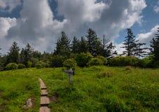 Деревянные планки через травянистое поле стоковое фото