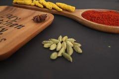 Деревянные плиты с концом звезды анисовки чилей корня турмерина семян тимона специй высушенным вверх Стоковые Изображения RF