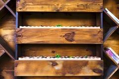 Деревянные полки для цветников на стене Стоковое фото RF