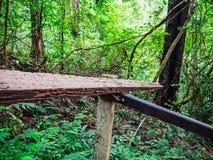 Деревянные поручни в пути к верхней части горы Khao Luang в национальном парке Ramkhamhaeng стоковое фото