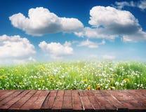 Деревянные пол и трава Стоковое Фото