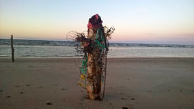 Деревянные поляки на морском побережье Стоковые Изображения RF