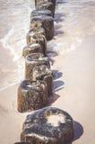 Деревянные поляки Стоковая Фотография
