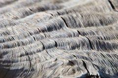 Деревянные предпосылка и текстура - трудные волны контура стоковое фото rf