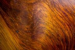 Деревянные предпосылка текстуры, идеальная для предпосылок и текстур Стоковое Фото