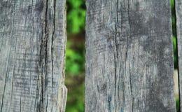 Деревянные планка и листья Стоковое Изображение RF
