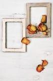 Деревянные рамки фото с сухими розами Стоковые Изображения RF