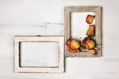 Деревянные рамки фото с сухими розами Стоковое Фото