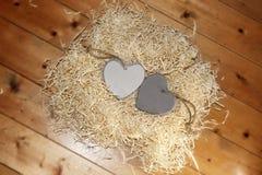 Деревянные сердца в гнезде Стоковые Фото