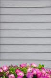 Деревянные стена и цветок Стоковое Фото
