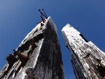 Деревянные столбы Стоковые Фото