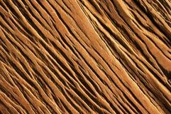 Деревянные текстура и предпосылка Стоковые Фотографии RF