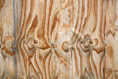 Деревянные текстуры Стоковое Изображение