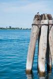 Деревянные томбуи на грандиозном канале Стоковая Фотография RF