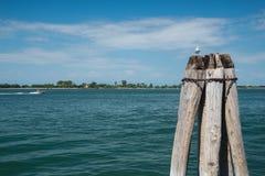 Деревянные томбуи на грандиозном канале Стоковая Фотография