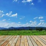 Деревянные фермы террасы Стоковые Изображения RF
