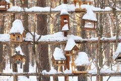 Деревянные фидеры птицы, дома на дереве в лесе зимы Стоковое Изображение RF
