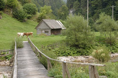 Деревянные хата и мост, горы Apuseni, Румыния стоковое изображение rf