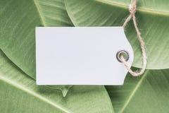Деревянные ценники на зеленой предпосылке листьев стоковая фотография
