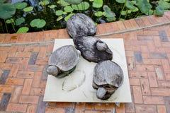 Деревянные черепахи украшают в саде Стоковая Фотография RF