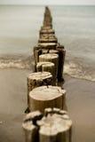 Деревянные groynes на Балтийском море стоковые изображения