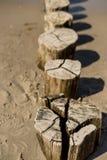 Деревянные groynes на Балтийском море стоковое изображение rf