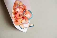 деревянные shavings карандаша на предпосылке белой бумаги стоковое фото rf