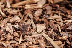 Деревянные shavings, предпосылка деревянных щепок Стоковое фото RF